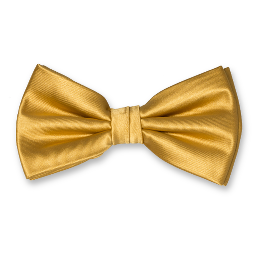 Herrenfliege Gold - Polyester Satin (1)