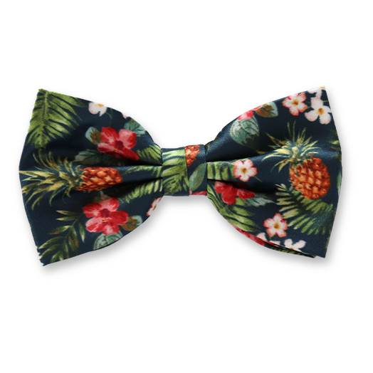 Herrenfliege Ananas-Muster - Polyester (1)